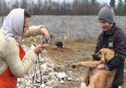 فیلم مستند «پناهگاه»            www.filimo.com/m/VOosI