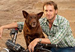 فیلم سینمایی سگ قرمز : آبی واقعی  www.filimo.com/m/vuRe2