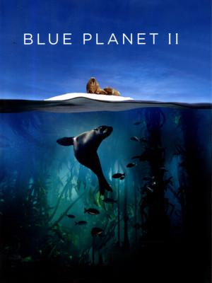 سیاره آبی 2 - || Blue Planet