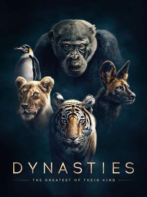 سلسله ها - فصل 1 قسمت 1 : شامپانزه - Dynasties S01E01
