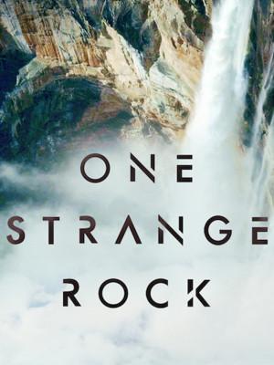 یک تخته سنگ عجیب - فصل 1 قسمت 9