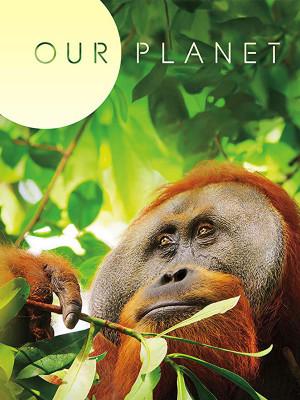 سیاره ما - فصل 1 قسمت 3 : جنگل ها