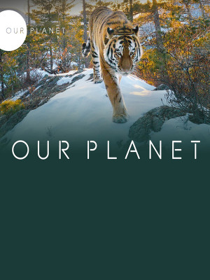Our Planet S01E08