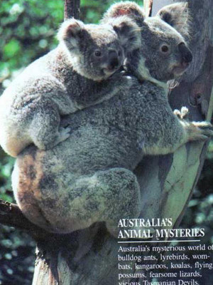 Australias Animal Mysteries