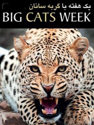 یک هفته با گربه سانان - فصل 1 قسمت 8