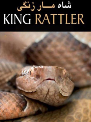 King Rattler