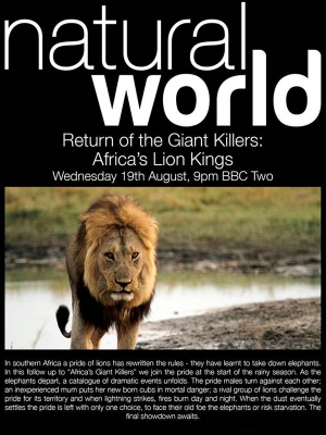 Return of the Giant Killers Africas Lion Kings
