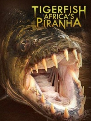 Tigerfish Africa Piranha