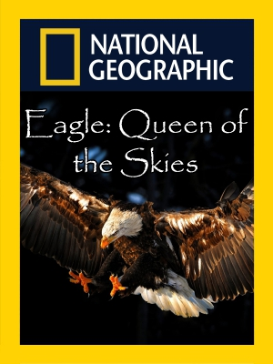 Eagle Queen of the Skies