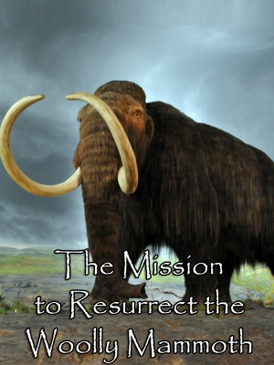 The Mission to Resurrect the Woolly Mammoth