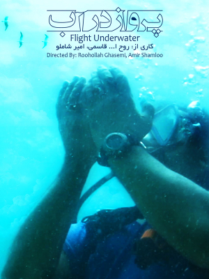 پرواز در آب