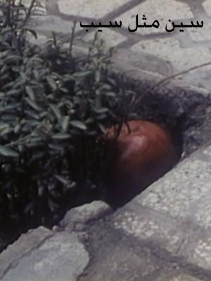 سین مثل سیب - سین مثل سیب,فیلم کوتاه,داستانی, فیلم سینمایی , سینما ,  دانلود فیلم  - محصول ایران - - - سال 1377