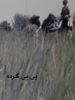 بی بی گرده - بی بی گرده,فیلم کوتاه,مستند, فیلم سینمایی , سینما ,  دانلود فیلم  - محصول ایران - - - سال 1377