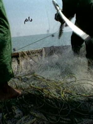 دام - دام,فیلم کوتاه,مستند, فیلم سینمایی , سینما ,  دانلود فیلم  - محصول ایران - - - سال 1376
