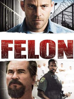 تبه کار - Felon