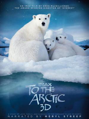 به سمت قطب شمال - To The Arctic