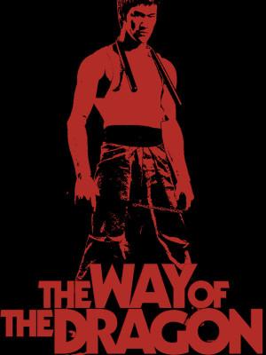 راه اژدها - Way of the Dragon - fv,s gd , بروس لی , way of the dragon , بروسلی , بروس علی , vhi Hcnih , راه اژدها , راهاژدها , راه ازدها,اکشن,رزمی, فیلم سینمایی , سینما ,  دانلود فیلم  - محصول هنگ کنگ - - - سال 1972 - کیفیت HD
