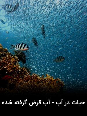 حیات در آب - آب قرض گرفته شده