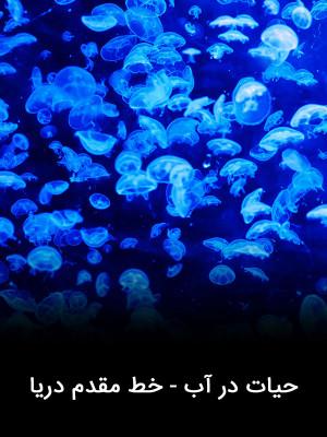 حیات در آب - خط مقدم دریا