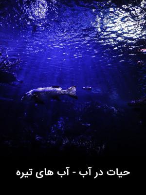 حیات در آب - آب های تیره