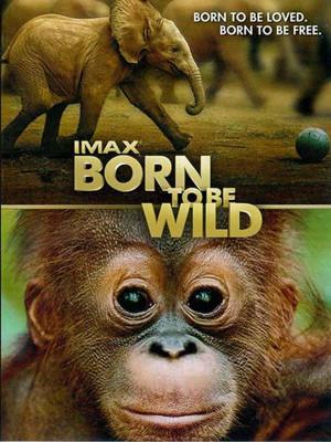 متولد حیات وحش - Born to Be Wild