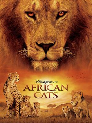 گربه های آفریقایی