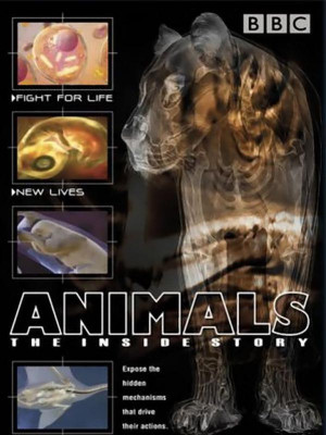 درون بدن حیوانات  - قسمت 1