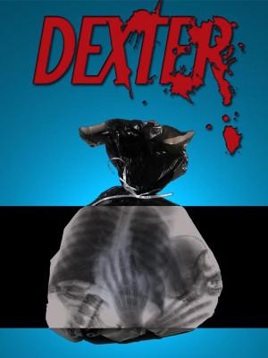 دکستر - فصل 1 قسمت 3