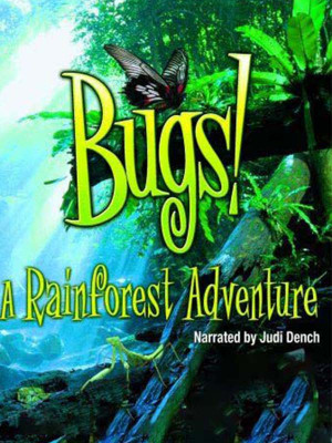 Bugs : A Rainforest Adventure