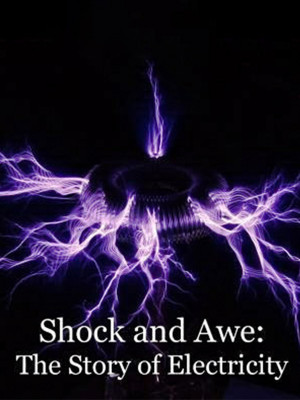 Shock and Awe : The Story of Electricity